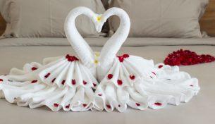 Hô biến khăn tắm thành chim thiên nga trang trí phòng tân hôn